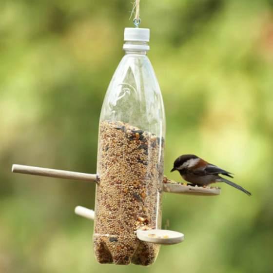 Делаем простые кормушки для птиц из пластиковой бутылки: варианты и рекомендации