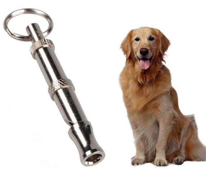 Отпугиватель собак – для тех, кто ведет активную жизнь
