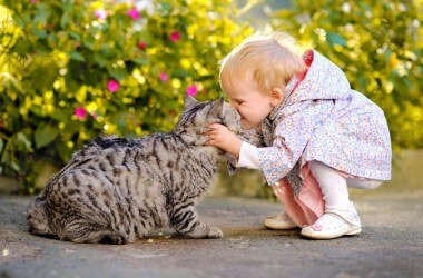 Животное болеет - как могут помочь дети