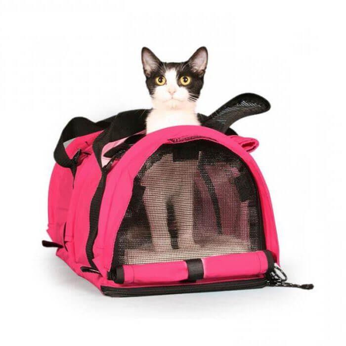 Как выбрать переноску для кошки?